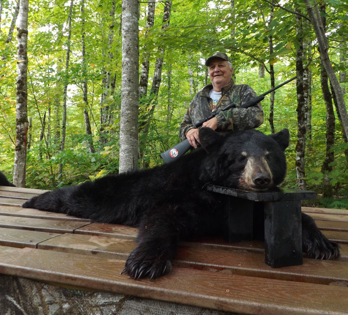 Maine Bear Hunting Photos At Ross Lake Camps